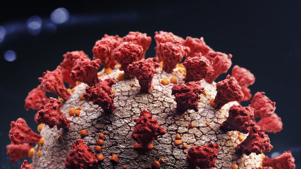 Immunologist: The New Strain Of Coronavirus Is Probably In Bulgaria Already