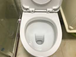 Toilet Bowl Against Covid-19 Invented In Bulgaria