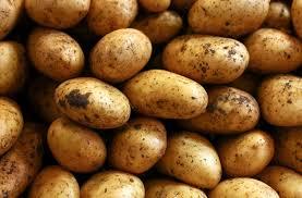 "Big ""Potato Fraud"" Exposed In Bulgaria"