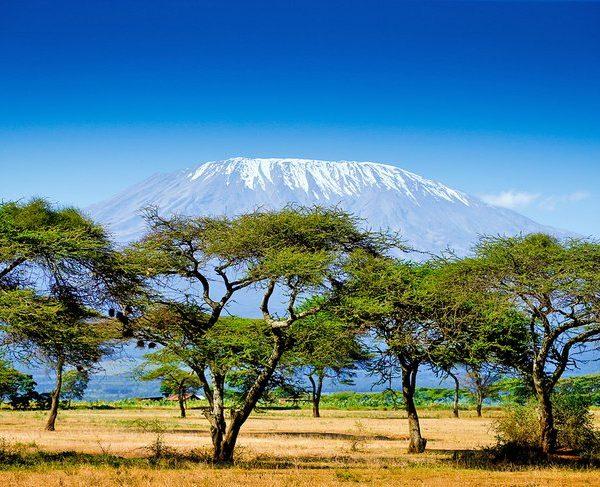 Kenya: Safari And Sandy Beach Just a Charter Flight Away For Bulgarians