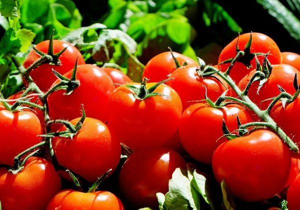 Economics Paradox: Bulgaria Imports More Tomatoes Than Bananas
