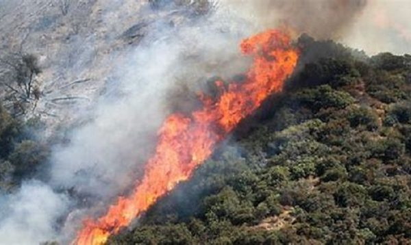 Wildfire In Rhodopes Spills Over To nearby Settlements